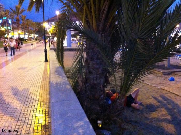 Бомж спит под пальмой