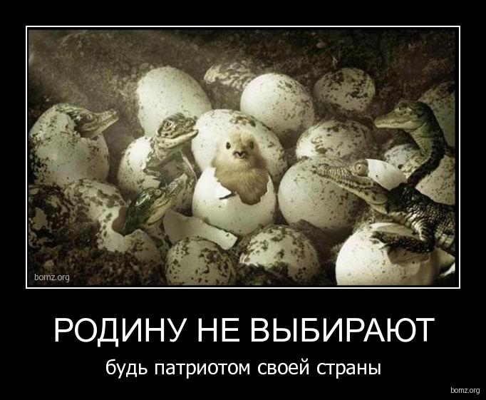 http://bomz.org/i/demotivators/100238-2010.07.10-08.53.55-snimok.jpg