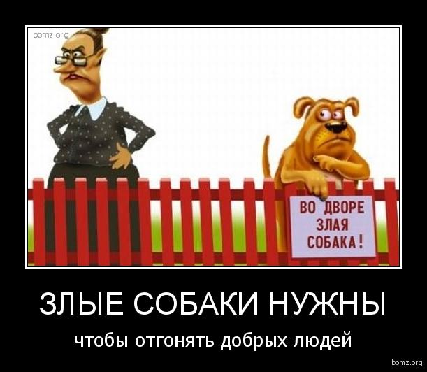 злые собаки нужны : злые собаки нужны