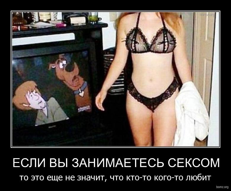 Секс с животными по телевизору.