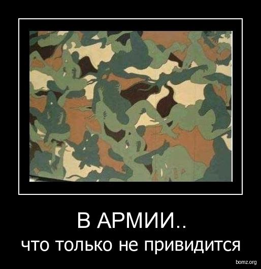 http://bomz.org/i/demotivators/284919-2009.12.30-02.31.18-army.jpg