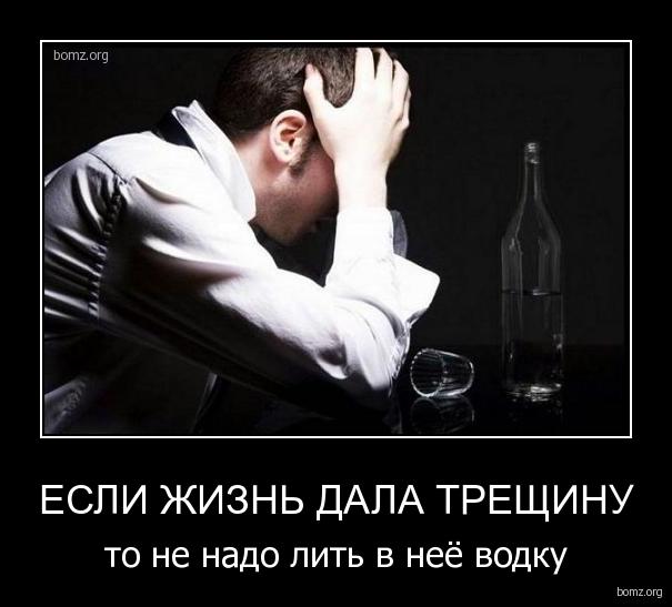http://bomz.org/i/demotivators/354217-2010.12.05-12.55.21-bomz.org-demotivator_esli_jizn_dala_treshinu_to_ne_nado_lit_v_neie_vodku.jpg