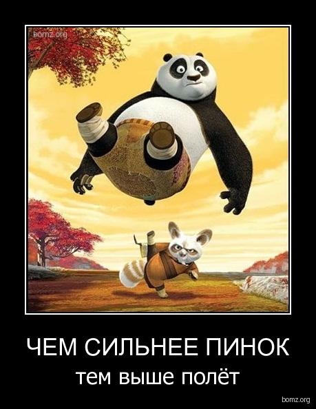 http://bomz.org/i/demotivators/444882-2012.09.03-07.04.21-bomz.org-demotivator_chem_silnee_pinok_tem_viyshe_poliet.jpg