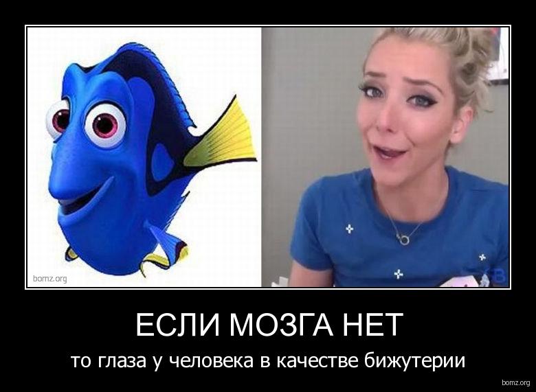 http://bomz.org/i/demotivators/460072-2012.03.07-11.28.42-bomz.org-demotivator_esli_mozga_net_to_glaza_u_cheloveka_v_kachestve_bijuterii.jpg