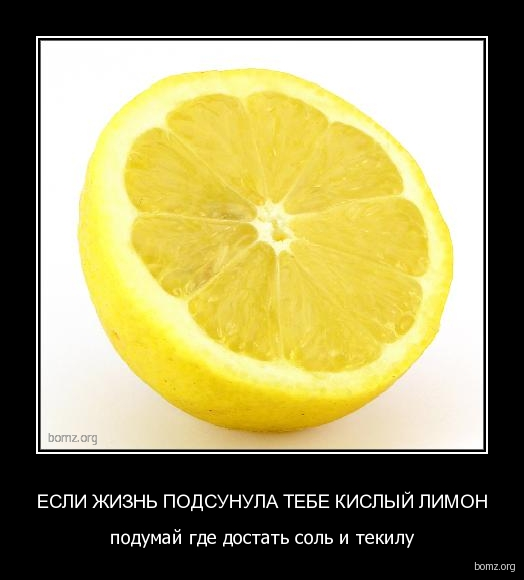 http://bomz.org/i/demotivators/473766-2010.07.10-06.48.37-lemon9.jpg