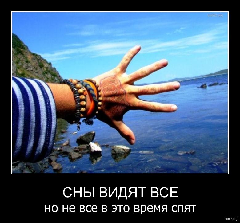 Сны видят все : Сны видят все