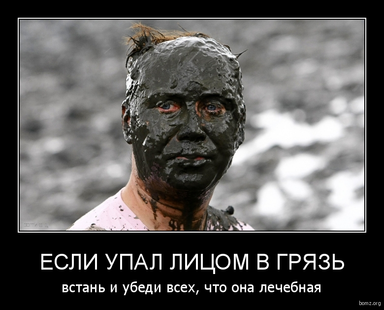 Если упал лицом в грязь : Если упал лицом в грязь