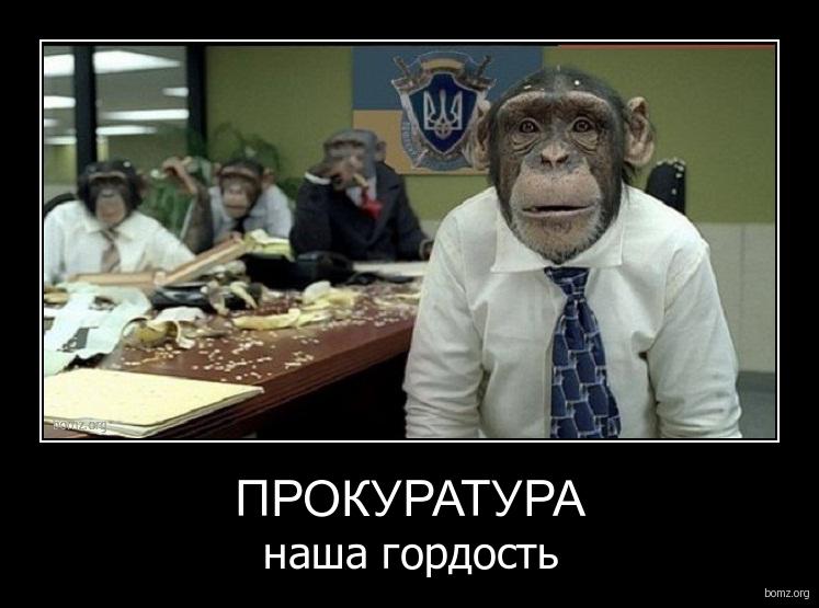 Прокуратура не признала фальсификации на скандальном 94-м округе - Цензор.НЕТ 7085