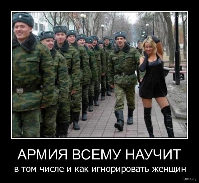 Армия всему научит армия всему