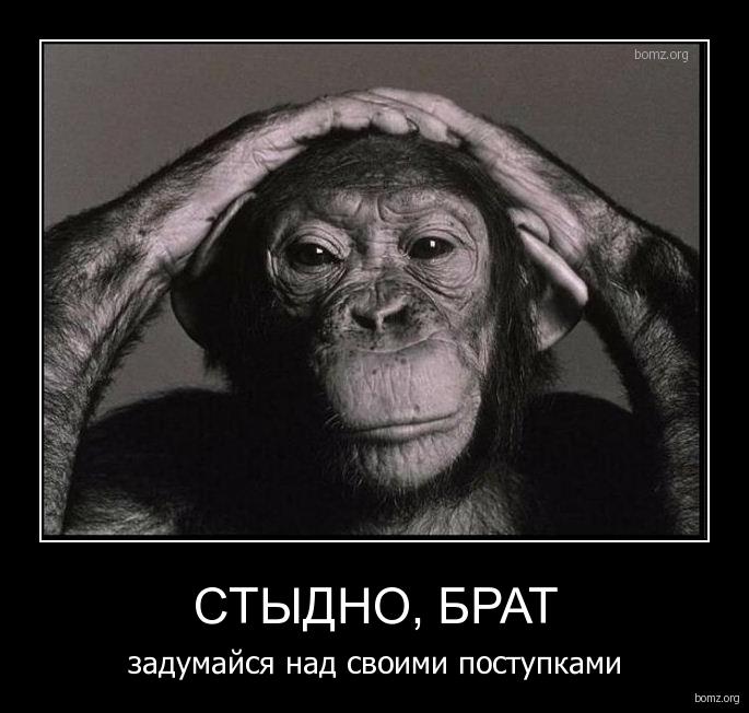 Голосовые приколы для кс 1 6 бесплатно ...: merschipi3868.narod.ru/2069-golosovie-prikoli-dlya-ks-1-6-besplatno...