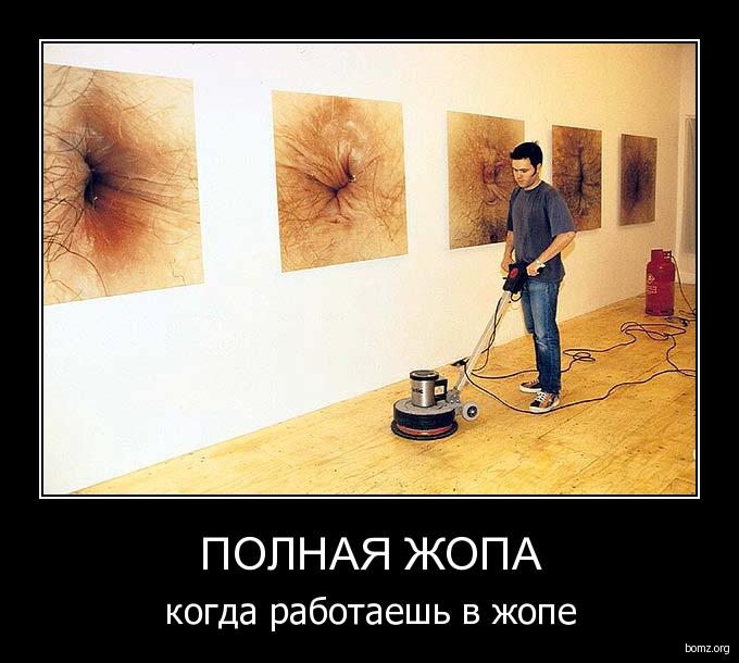 Жопа к жопе фото фото 720-972