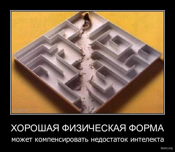 http://bomz.org/i/demotivators/771583-2010.08.02-10.30.25-0001yz1a.jpg