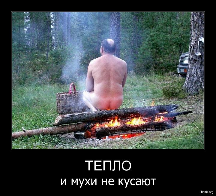 тепло : тепло