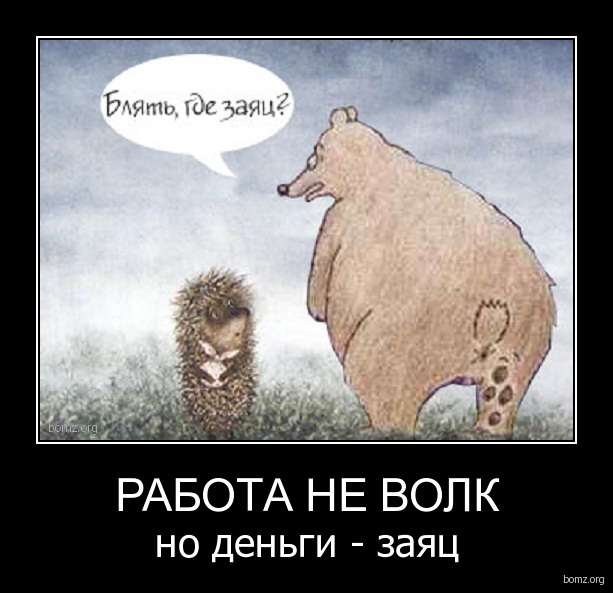 заяц волк приколы