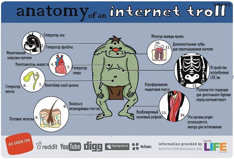 прикольные картинки про интернет: