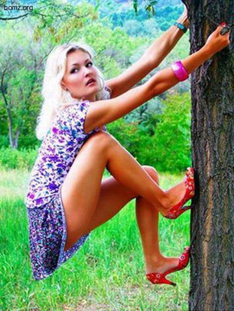девушка на дереве | фото приколы, смешные и прикольные картинки