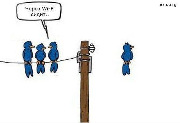 Через WiFi сидит