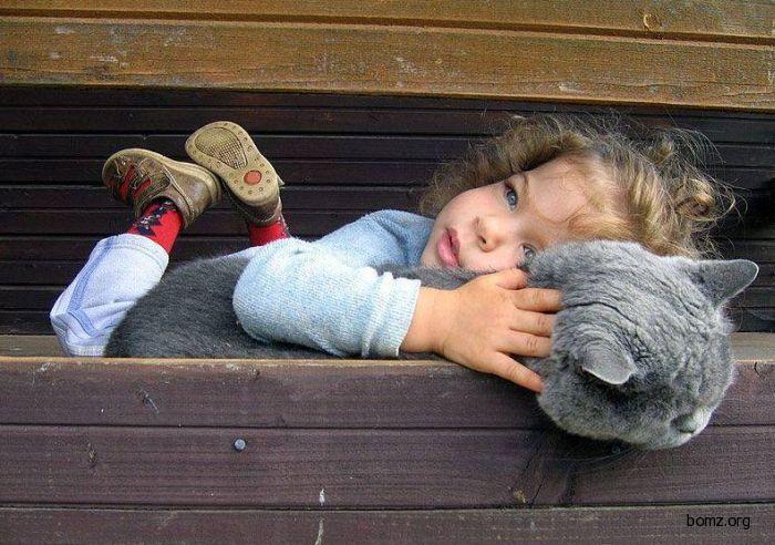 Игрушка и подушка