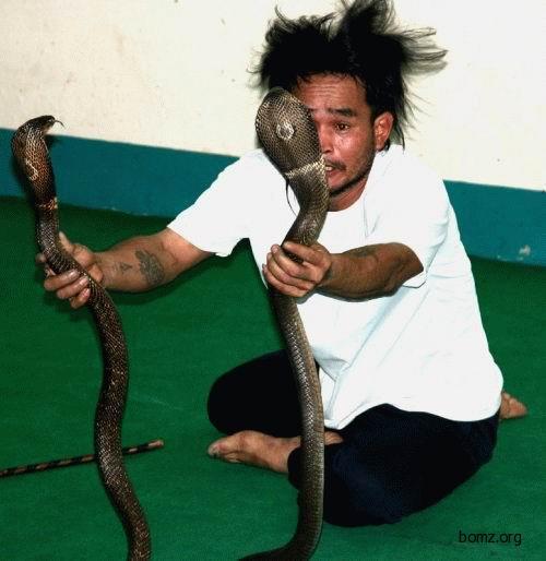 Укратитель змей