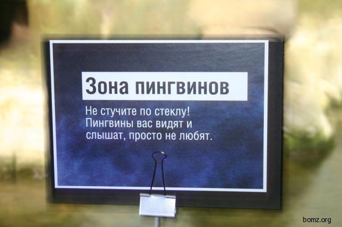 bomz.org/i/lol/858189-2011.03.22-12.49.30-bomz.org-lol_zona_pingvinov.jpg