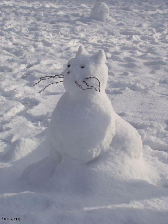 Снегокот