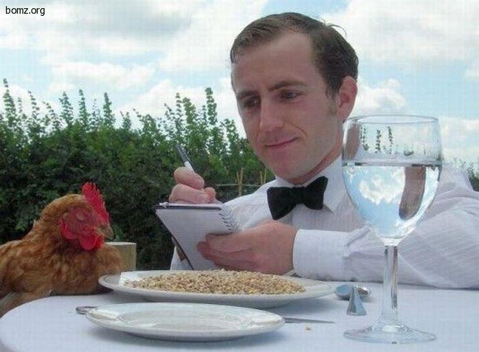 курка и официант