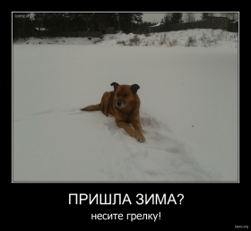 Пришла зима? : Пришла зима?