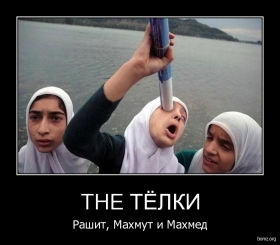 THE ТЁЛКИ : THE ТЁЛКИ