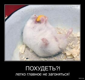 http://bomz.org/i/thumbs/269091-2010.11.14-05.13.52-bomz.org-demotivator_pohudet_legko_glavnoe_ne_zagonyatsya.jpg