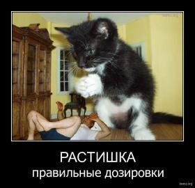 http://bomz.org/i/thumbs/707286-2011.05.07-05.44.08-bomz.org-demotivator_rastishka_pravilniye_dozirovki.jpg