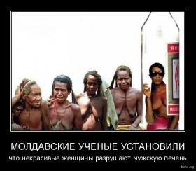 молдавские ученые установили : молдавские ученые установили