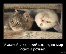 http://bomz.org/i/thumbs/790670-2010.08.03-01.31.45-1222174552_pb25201.jpg